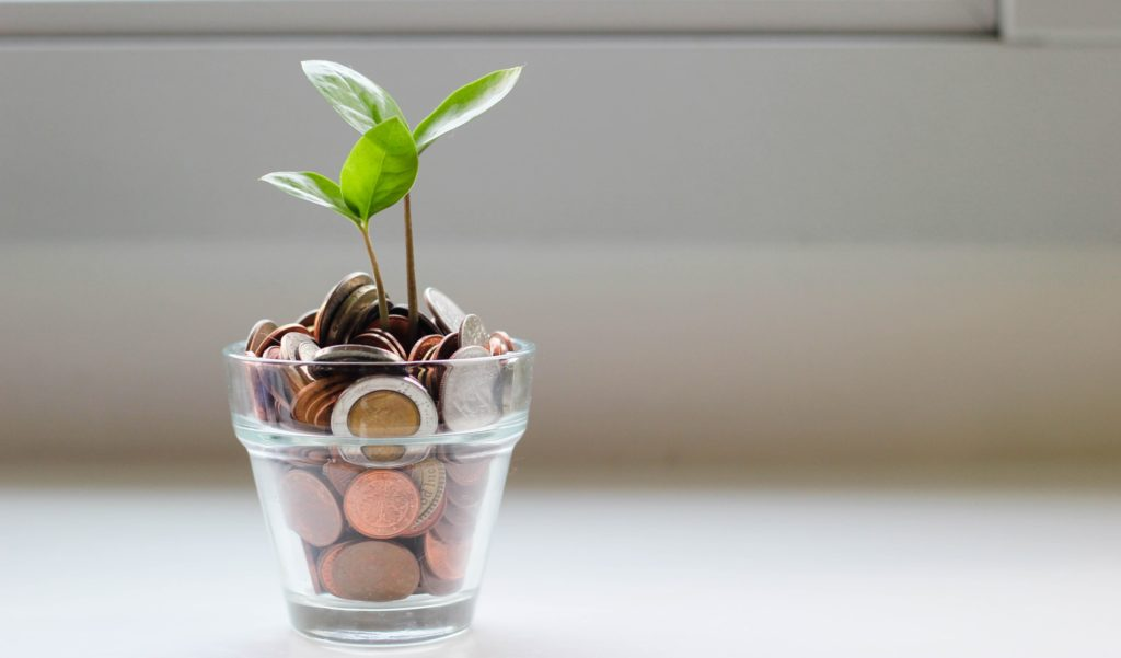 Saving Money On A Plant-based Diet